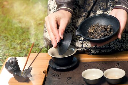 chinese tea ceremony: Female tea master making Chinese tea ceremony in garden