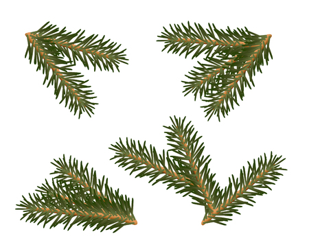 A set of Christmas tree branches for decorating Illustration