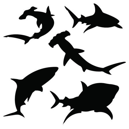 Shark vector silhouettes set. Pesce di mare, nuoto animale, fauna illustrazione, isolato su bianco