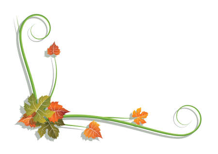 vine branch with colored leaves on a white background