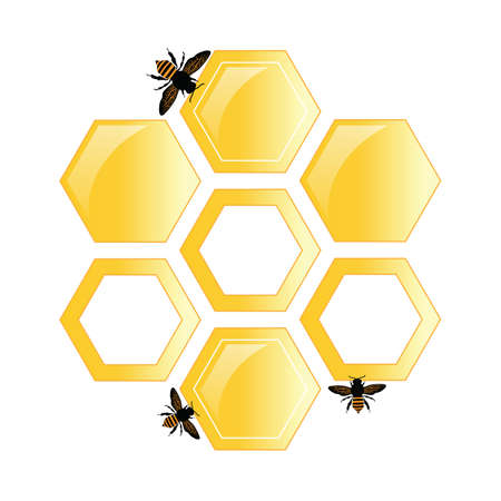bees on the background of honey hexagons