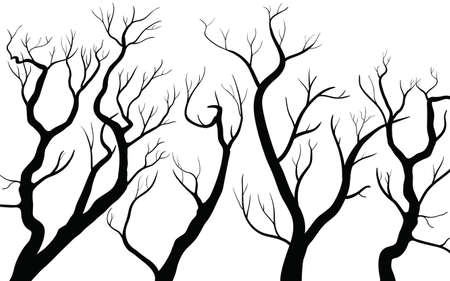 Set of Dead Tree without Leaves Vector Illustration Sketched