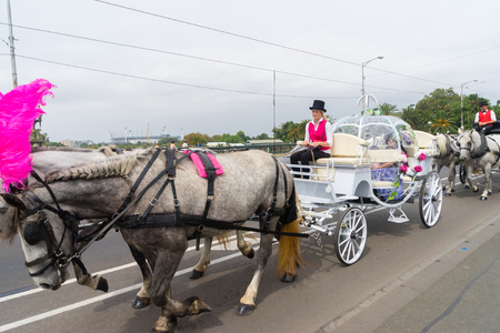 Melbourne, Australia - March 5, 2016: View of coach drivers driving horse-drawn Cinderella carriage carrying tourists on the street in Melbourne. Such tour is a romantic way to see Melbourne. Editorial