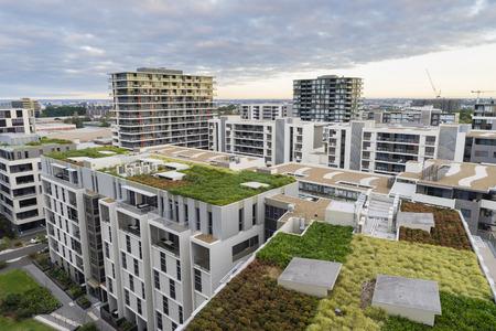 緑の屋根のビューの近代的な建物と日の出の間にシドニー、オーストラリアの他の住宅