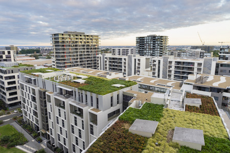 Weergave van groene dak op moderne gebouwen en andere residentiële gebouwen in Sydney, Australië tijdens zonsopgang Stockfoto