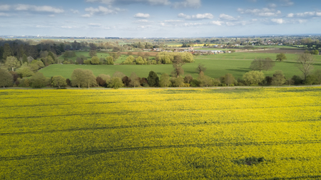 Birds view of fields near Windsor Castle