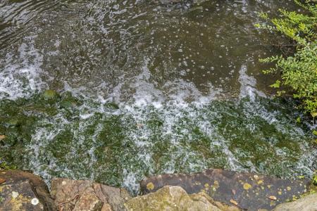 Mountain Stream in Elveden Forest Banque d'images