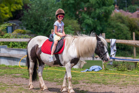 Horseback riding, lovely equestrian - young girl is riding a horse