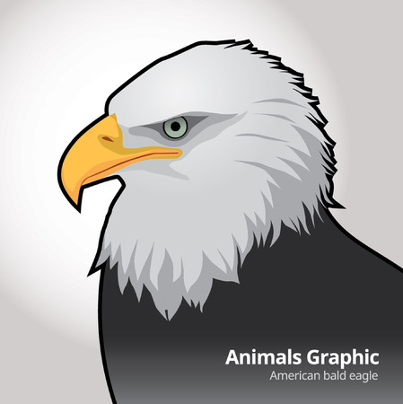 Animals Graphic - detail eagle , vector illustration