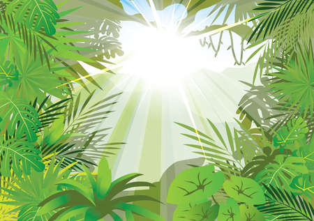 ochtend dauw: verlichting jungle achtergrond, vector