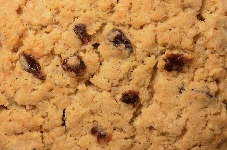 Texture and pattern on raisin cookiebiscuit surface, a top view close up photo image on cookiebiscuit surface present a detail of texture and pattern on biscuitcookie surface