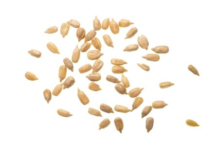 Isolate shelled sunflower seeds, isolate hulled sun flower seeds, a top view close up photo image of group of peeled sunflower seeds isolate on a bright white light background
