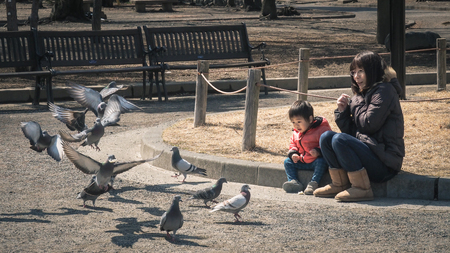 Matsumoto, Japan - 15 MARCH 2016 : Unidentified woman and her son see the pigeons at Matsumoto castle.