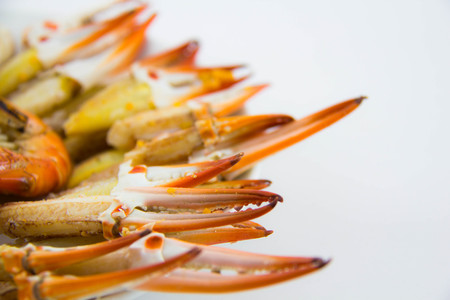crap: Steamed crap claws on white background