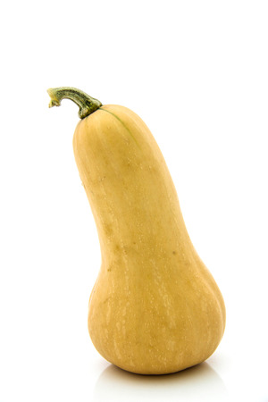 Butternut squash on white background photo