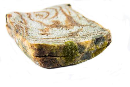 mouldy: mouldy bread