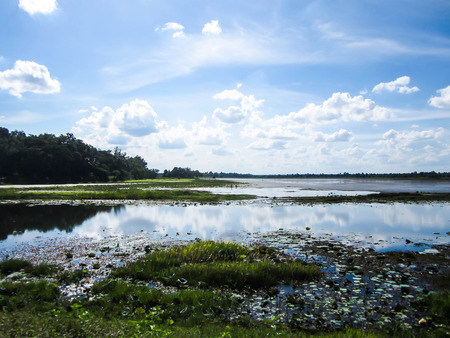 Beautiful rural landscape with flood waters photo