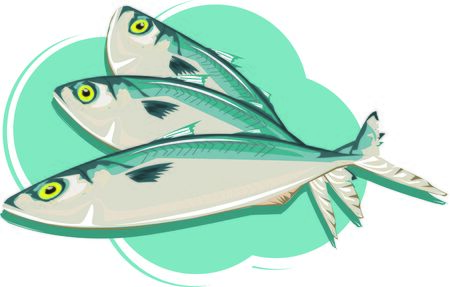 Fish, mackerel. Vector picture on a light green background.