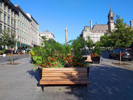Front view of a bench with some planters behind in a square in Montreal, Quebec.