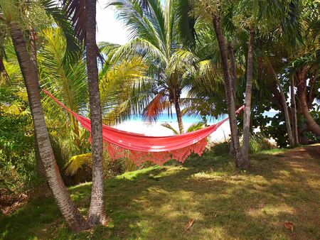 Time to relax with silhouette of red hammock and coconut tree at the Caribbean Sea. Empty hammock in the palm on a tropical beach Archivio Fotografico