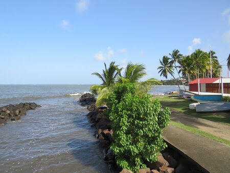 Netter Pier in Französisch-Westindien. Karibisches Meer. Palmblatt in Martinique,