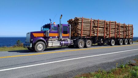 Timber truck transporting wooden logs on the Gaspesie road. Quebec Canada