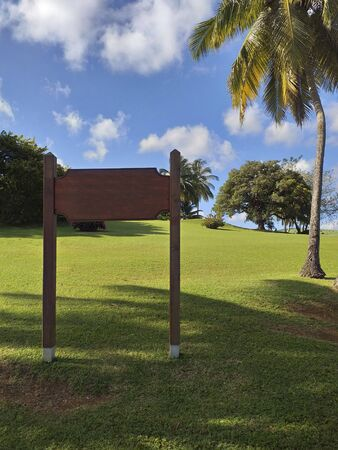 Tropical garden with grass and palm trees. Empty wooden sign and caribbean blue sky. Stockfoto