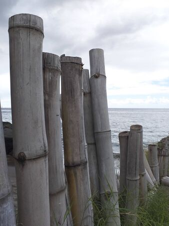 Close-up of row of bamboo canes with the Caribbean sea in the background