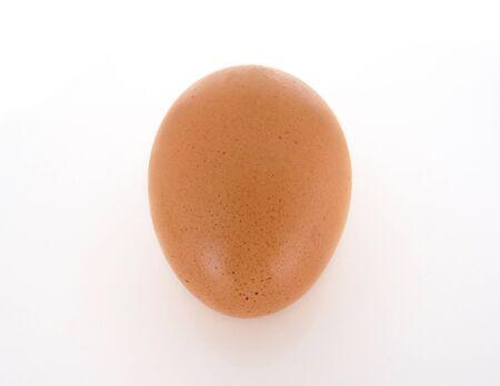 Chicken egg isolated on white background. Single brown egg Stockfoto