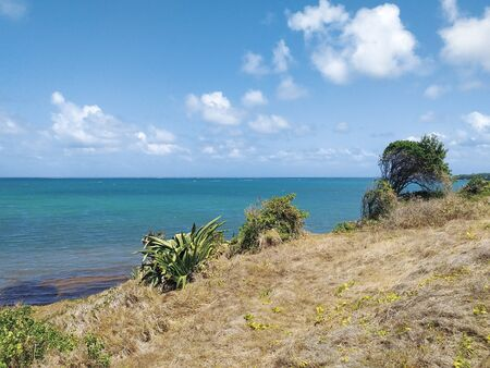 Caribbean sea under tropical blue sky and coastal vegetation. Authentic and relaxed Caribbean landscape.