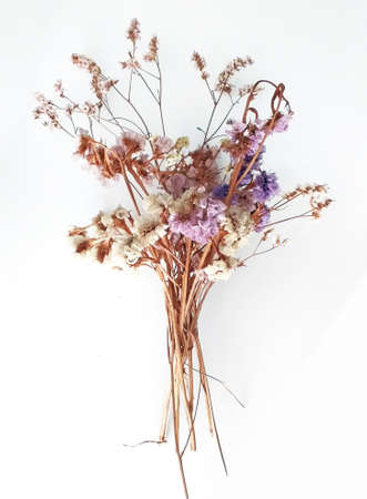 Front view of bouquet of dried natural flowers isolated on white background. Delicate bouquet of wild flowers, close up.