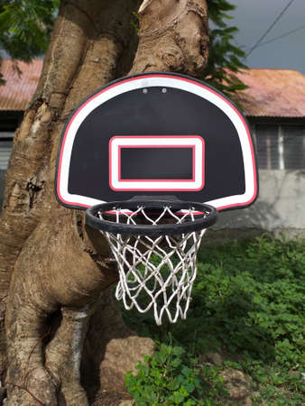 Basketball basket on a tree trunk. Front view. Homemade basketball hoop hung on a tree outside. Sport and outdoor recreation. Active lifestyle.