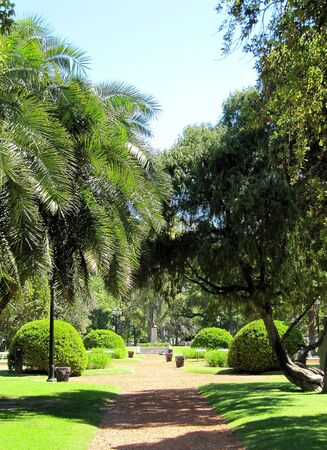 City green quiet park                                photo
