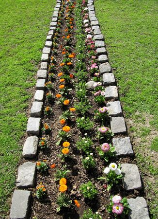 Decorative flower long bed
