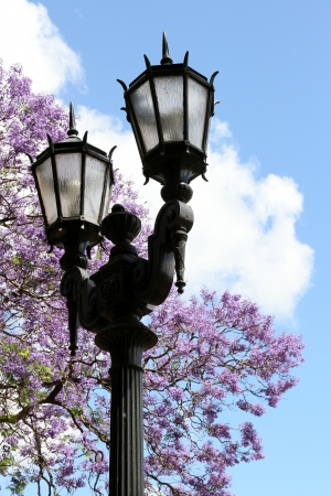 Double lamp in the spring city against the sky photo