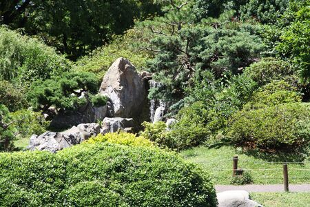 Green Japanese garden  Spring  photo