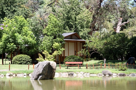 Summer landscape in a traditional Japanese garden  Tea house