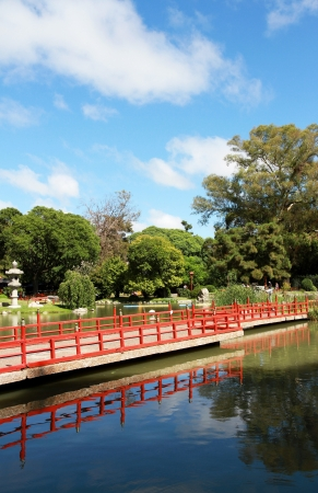 Traditional Japanese garden. Summer landscape. photo