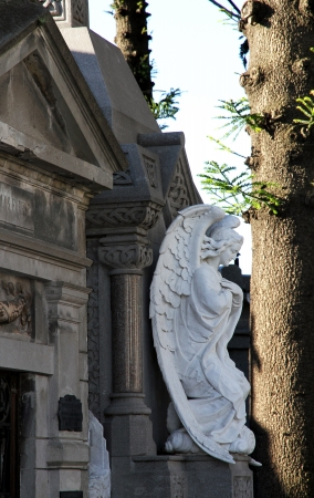 Cemetery Recoleta in Buenos Aires Sight of Argentina  photo
