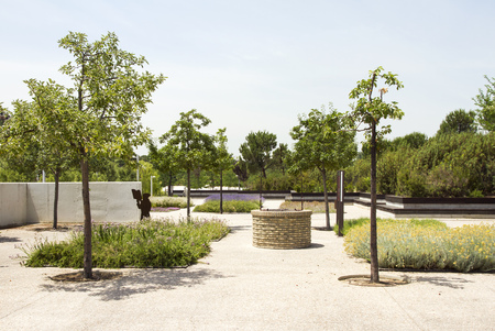 Park Juan Pablo 2 in Madrid. Cultivation of herbs. Stock Photo