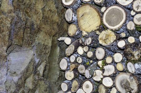 Firewood logs stacked up on top of each other in a pile and wall photo