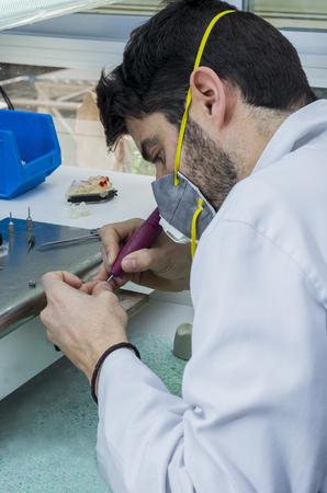 dental laboratory: T�cnico dental que trabaja con articulador en la estructura met�lica de una corona dental o un puente en el laboratorio dental. Foto de archivo