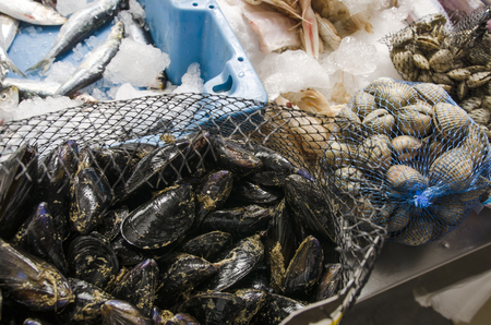 Mussels in a net at the fish market.
