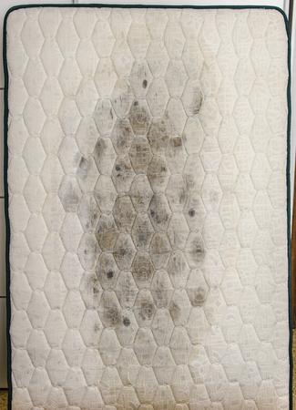 Closeup of mold on mattress, health problems