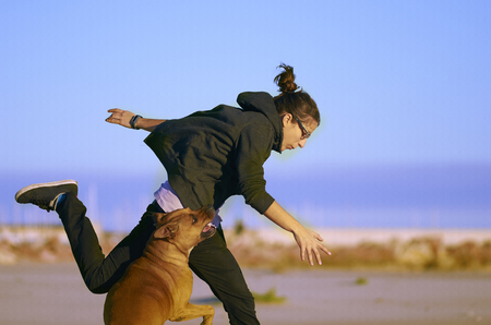 Woman playing with her dogs on a beach. Standard-Bild