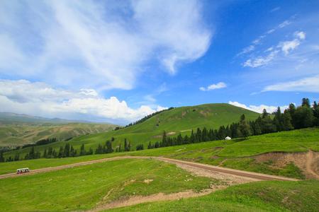 grasslands: Nalati grasslands