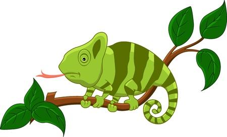chameleon lizard: simpatico cartone animato camaleonte Vettoriali