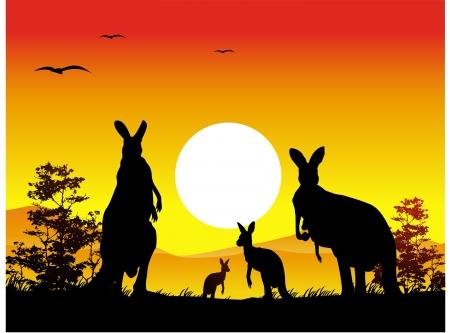 australian animal: silueta de la familia de los canguros