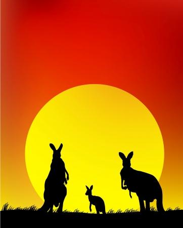 australie landschap: silhouet van de kangoeroe familie