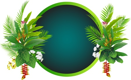 tropical frame: tropical plant background